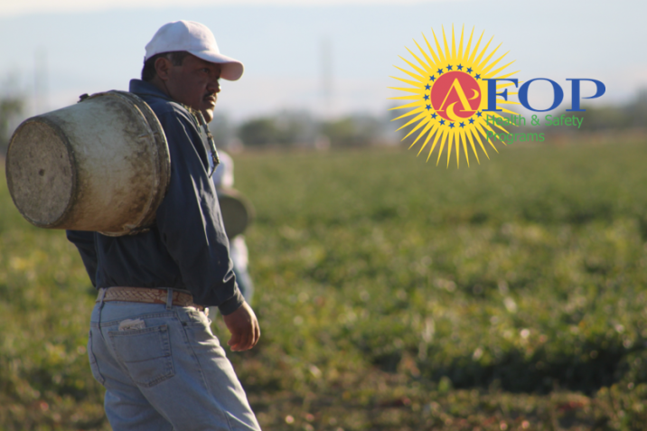 Farmworkers pick 85% of our fruits and vegetables